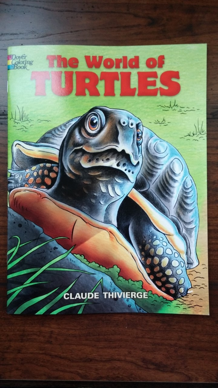 Turtle Coloring Book – Sun of a Beach Towels
